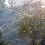 20141003_Erntedankfest-Hessenpark_0028