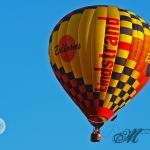 20100719_heissluftballon-koenigstein_0013_ausschnitt