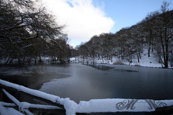 Entenweiher im Woogtal (Winter)