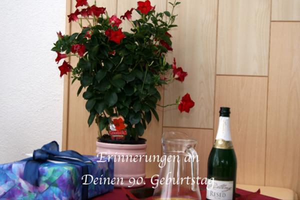 Fotobuch Cover 90. Geburtstag