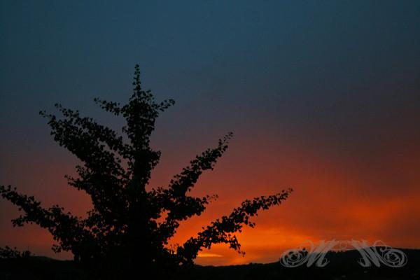 Sonnenuntergang über dem Taunus (August 2013)