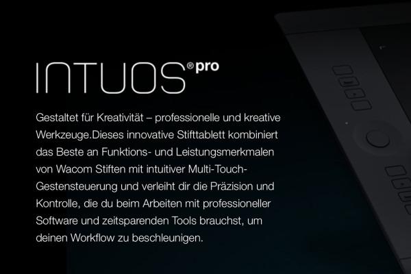 Wacom Intuos Pro (Modelle 2013)