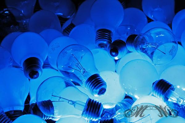 Glühbirnen in der Mülltonne
